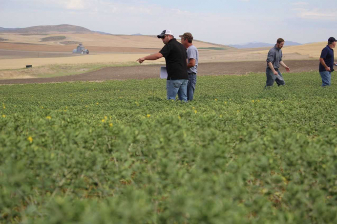 Utah State University's Blue Creek Farm – A Decades Old Collaboration of Farmers and Researchers