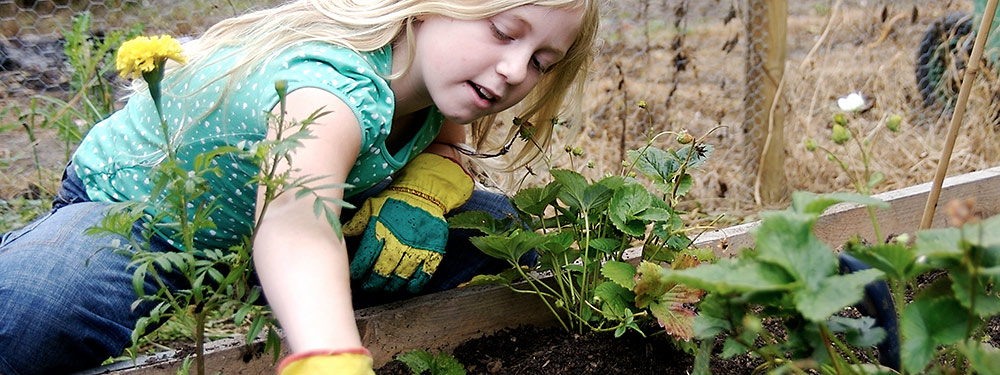 girl planting seeds in garden