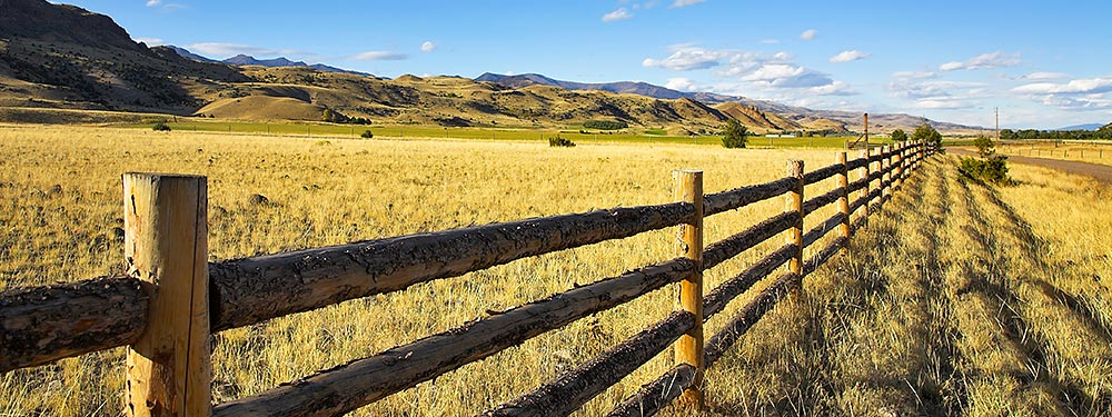 wooden fence on rangeland