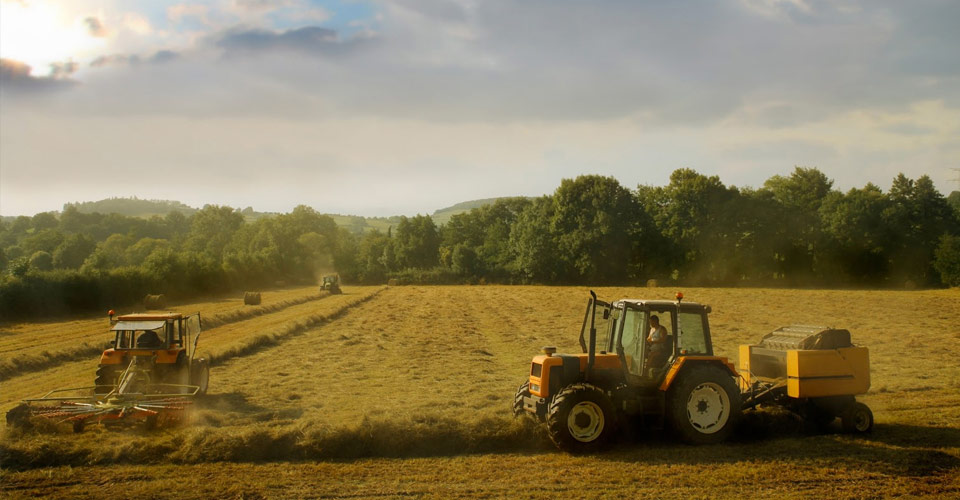 Agricultural Communications and Journalism