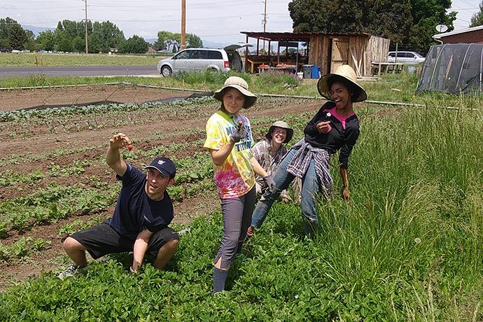 Student Organic Farm Donation to Food Pantry