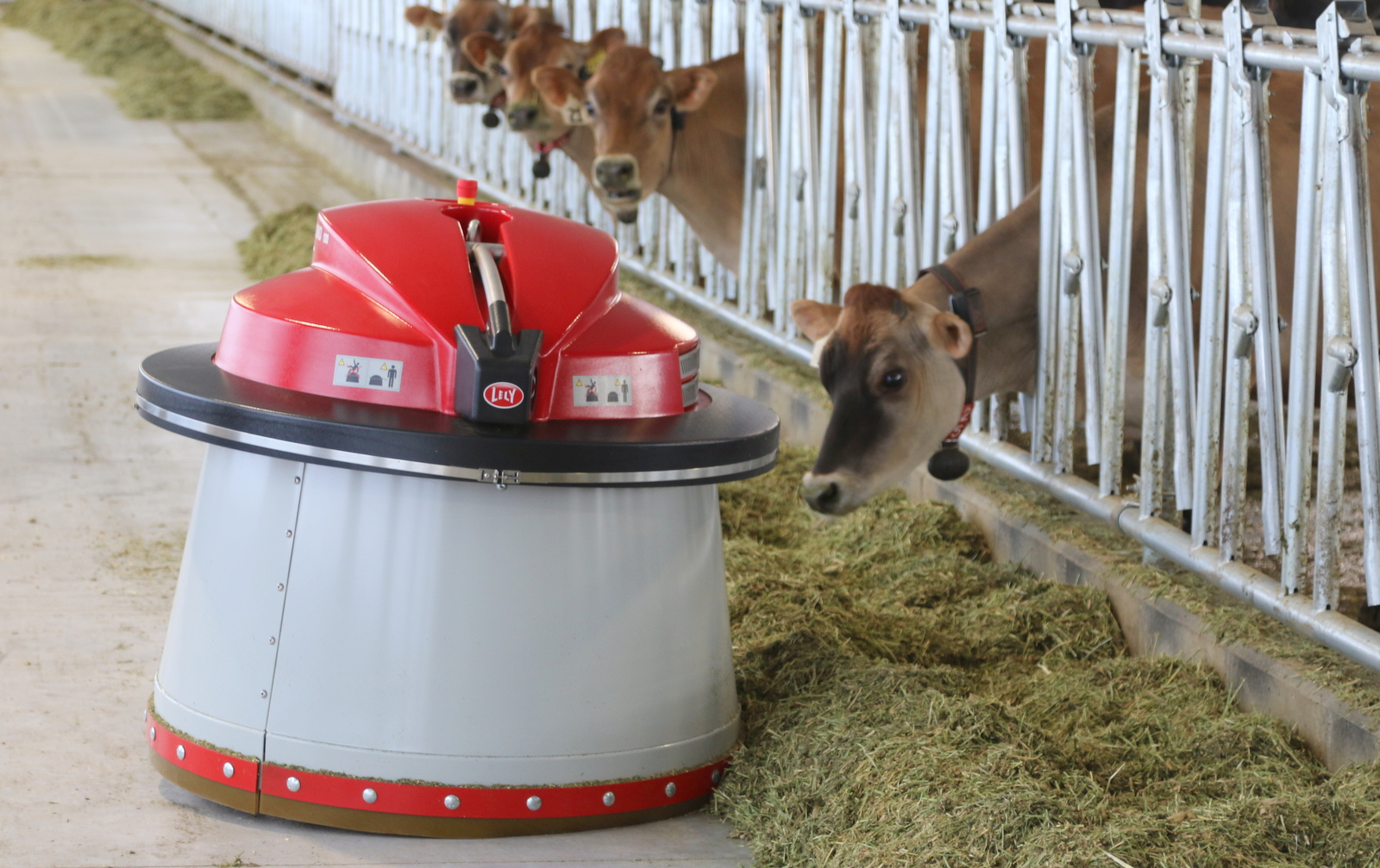 Dairy Robotics and Economics: New Milking Barn at USU Changes More Than Equipment