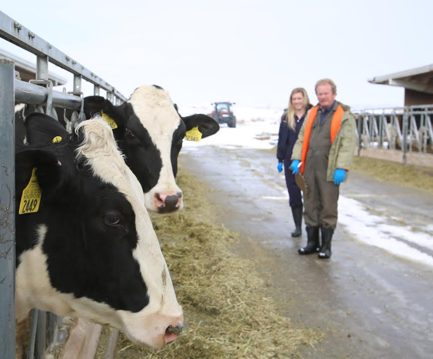 Utah State's Caine Dairy Farm Awarded for Being Number One College Dairy Herd in the Nation