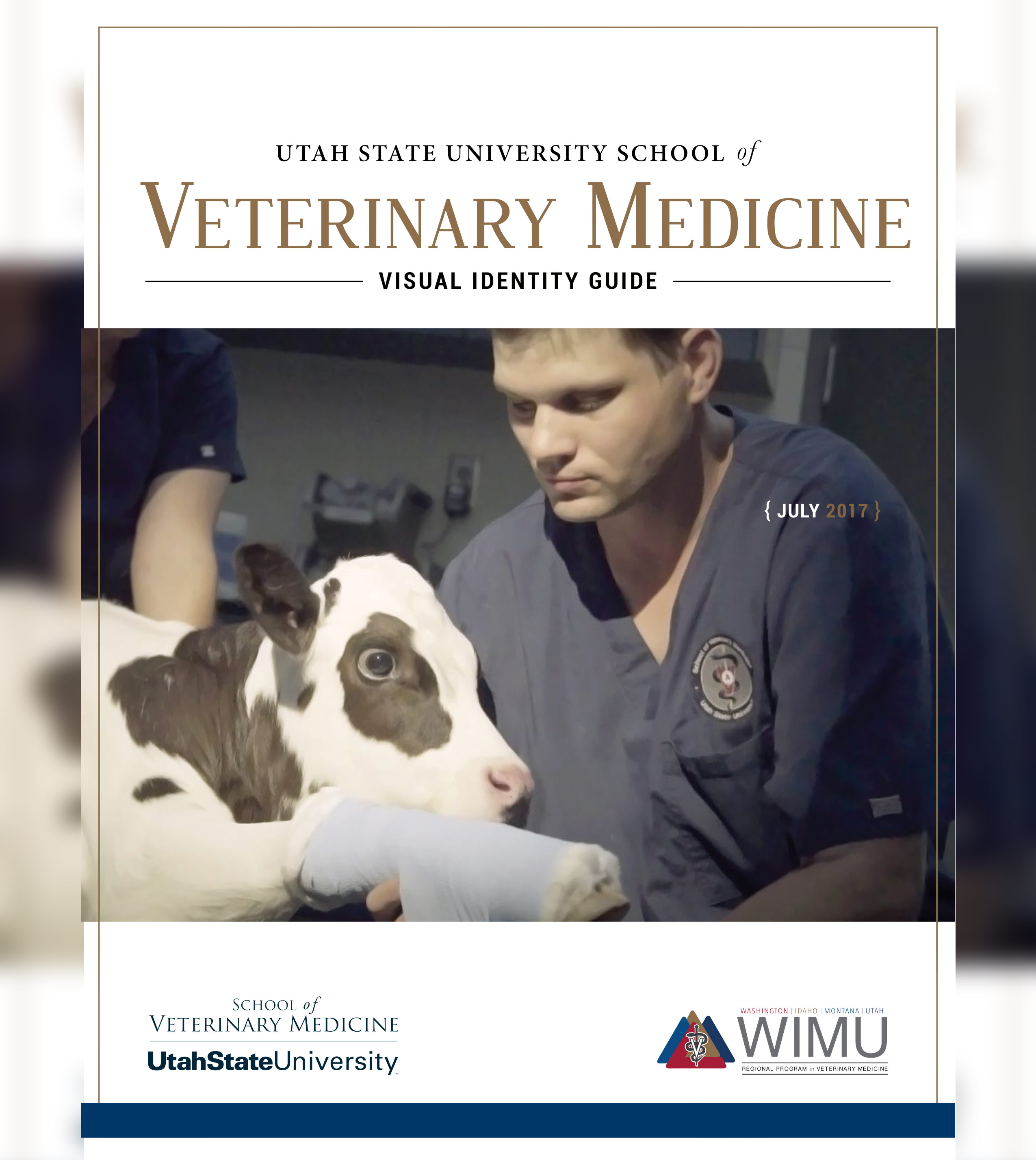 VetMed Visual Identity Guide Cover
