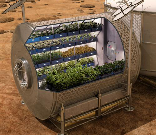 Farming in Space